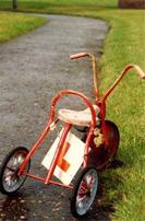 learner-driver-tricycle.jpg