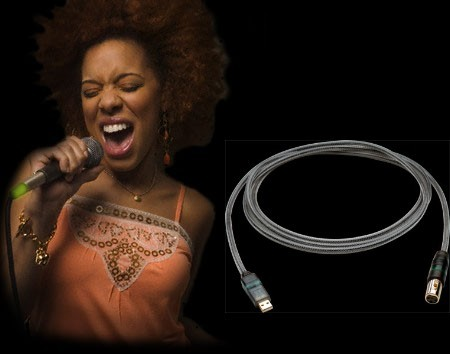 LightSnake USB intelligent microphone cable