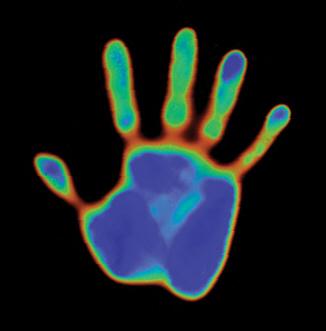 palm-hand.jpg