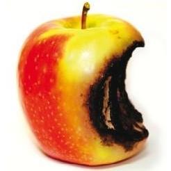 rotten apple.jpg