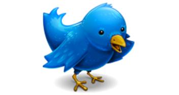 twitter-bird.jpg
