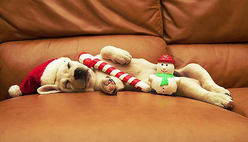 christmas-hangover