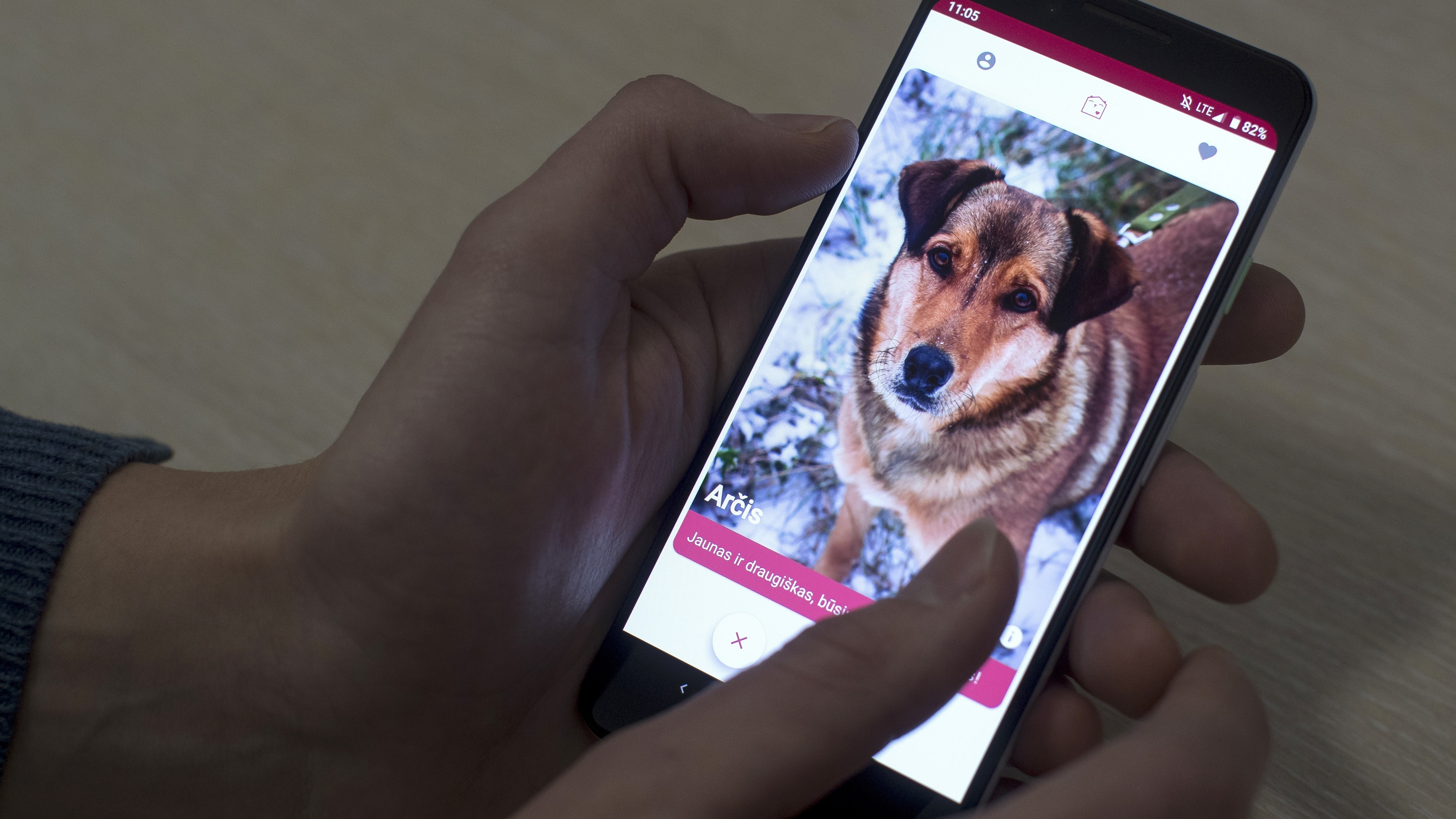 GetPet - Tinder-style app matching dogs to potential owners