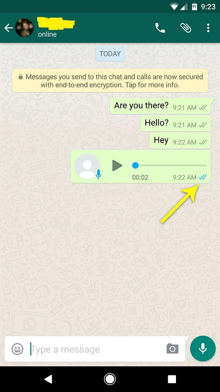 """How to know your friend has read your message on WhatsApp when they have disabled the """"Read Receipts"""" option"""