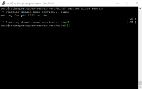 DNS bind9 restart