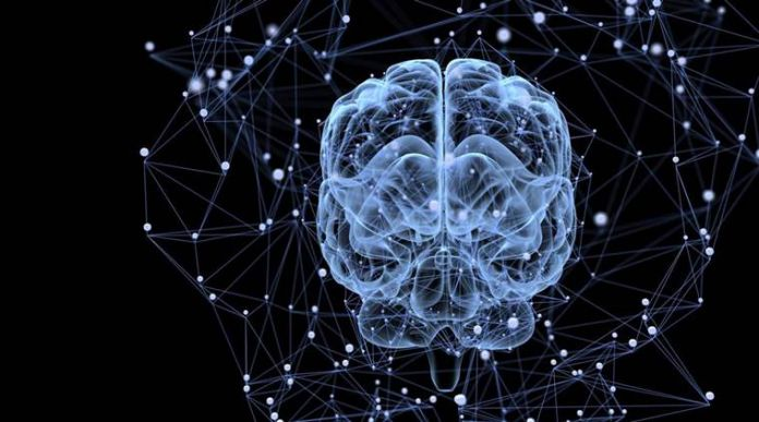 New technology directly read brain signals