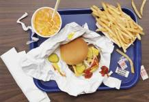 Radio Tracking Method to Track Hazardous Chemicals From Fast-Food Wrappers in the Body