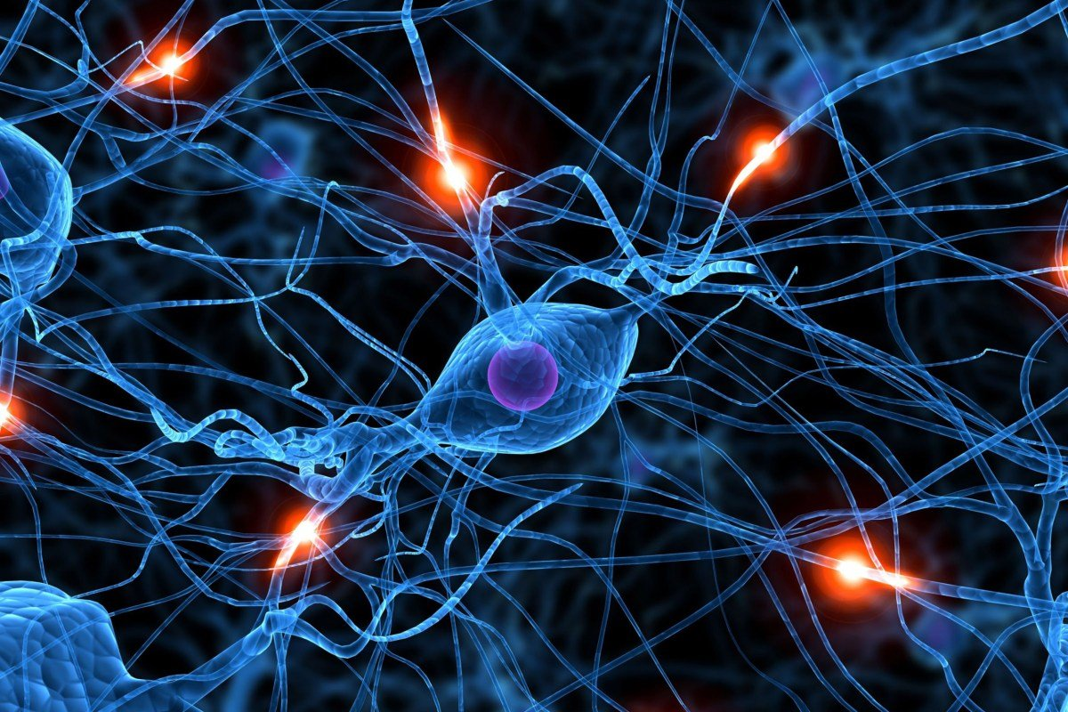 Study discovered key players in MS progression