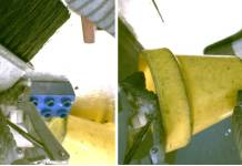 """On the left, the gripper is holding the brush and there are some objects (yellow cup, blue plastic block) in the background. On the right, the gripper is holding the yellow cup and the brush is in the background. If the left image was the desired outcome, a good reward function should """"understand"""" that the two images above correspond to different objects."""