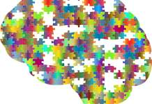 How does the human brain marks time?