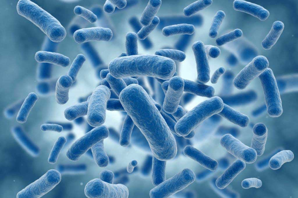 Antibiotic resistant bacteria found in river water