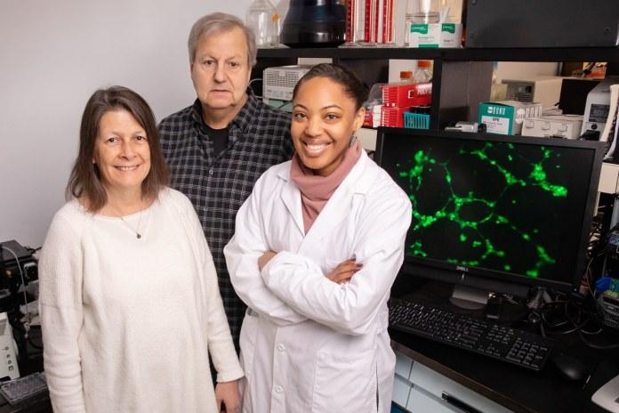 From left: Nicki Engeseth, professor of FSHN; Bill Helferich, professor of FSHN; and doctoral student Ashley Warfield-Oyirifi.