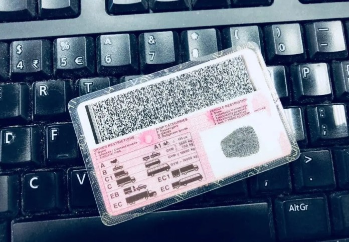 South African drivers licence