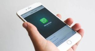 WhatsApp Stop Working on iPhone