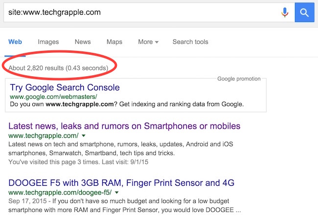 CHECK INDEXED PAGES OF YOUR BLOG IN GOOGLE