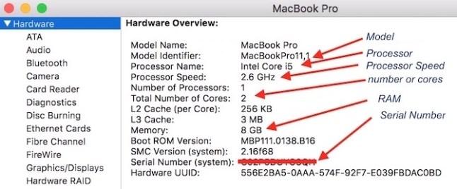 Mac's System Information detail