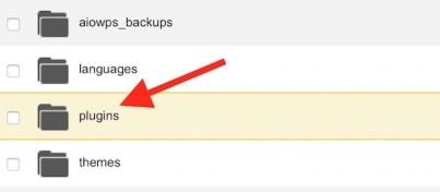 Wordpress Plugin Folder