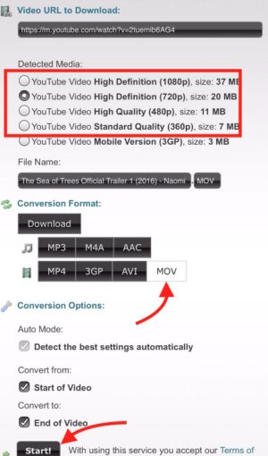 download youtube video in vlc format