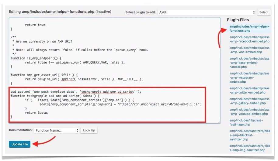 add-code-to-amp-plugin