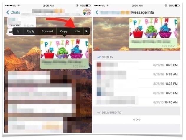 iphone-whatsapp-message-group-read-members