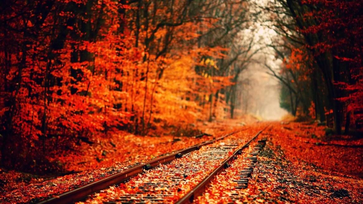 autumn-wallpapers-1
