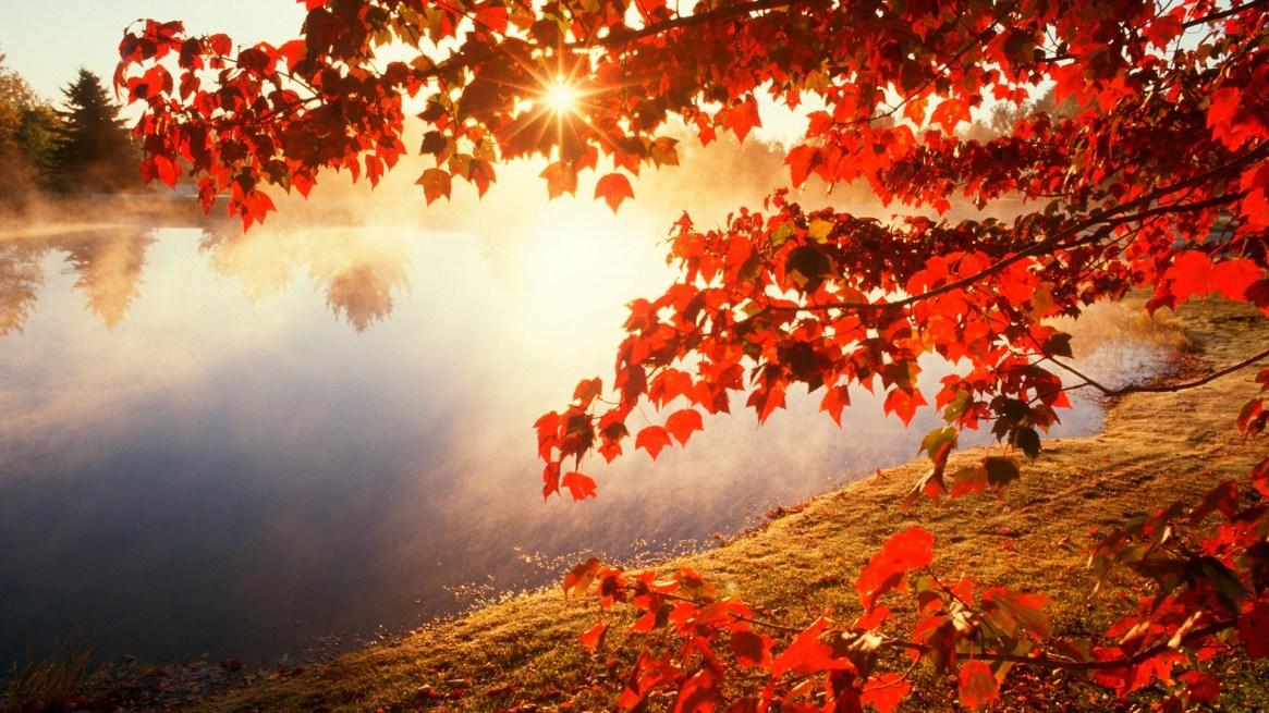 autumn-wallpapers-4