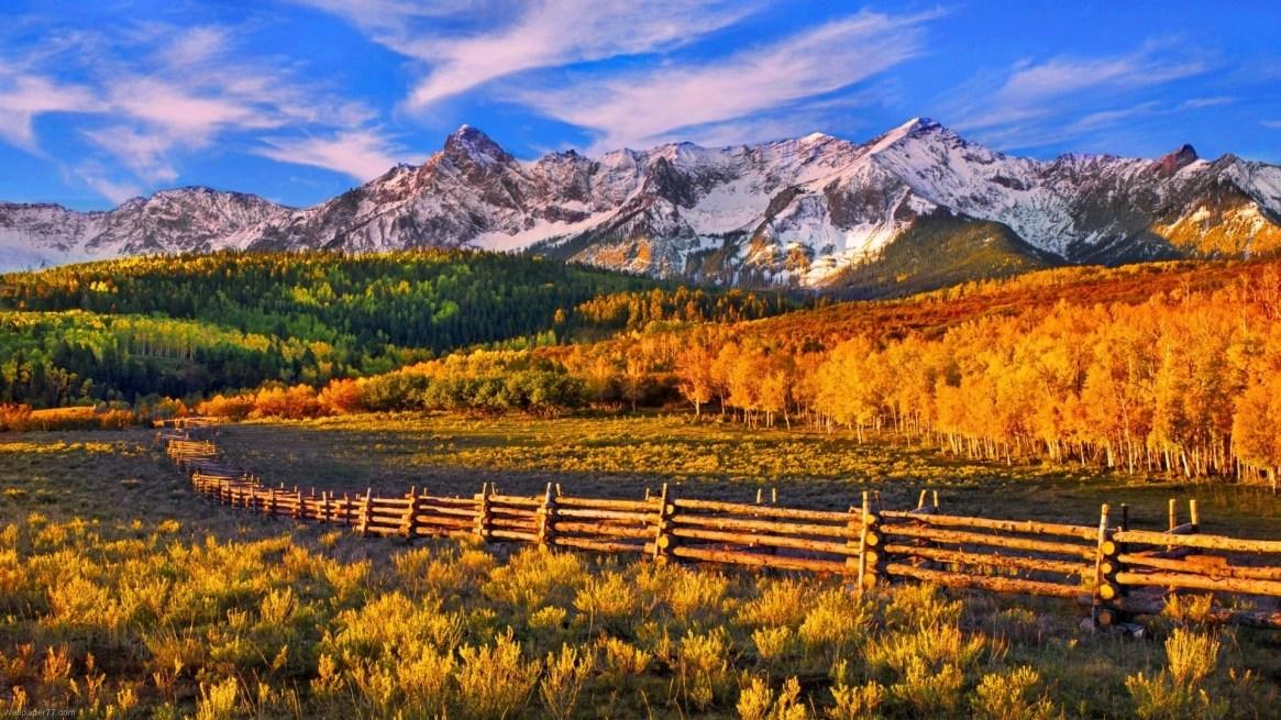 autumn-background-blue-sky
