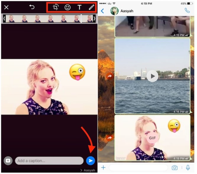 edit-and-send-gif-on-whatsapp