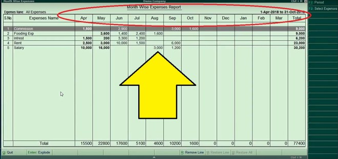 monthly expenses report tdl, monthly expenses report in tally, monthly expenses report , tally monthly report, tally monthly report tdl, tally erp 9, tally, tally tdl, .tdl,.tdl file for tally, tally tdl file,