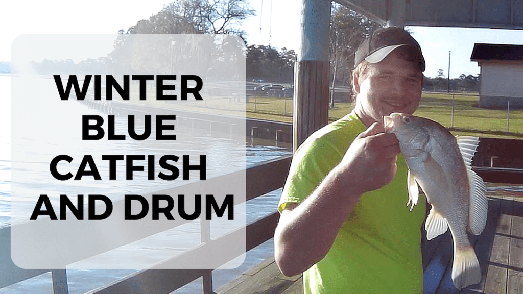 WINTER BLUE CATFISH AND DRUM