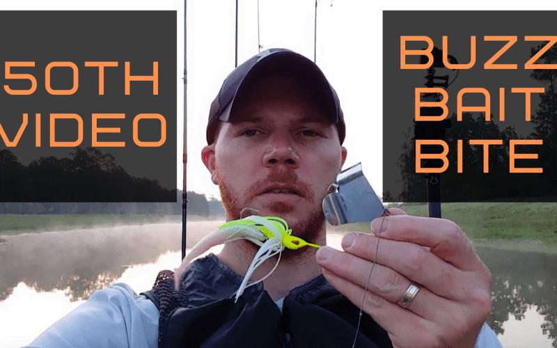 50th Video - Buzz Bait Bass Fishing