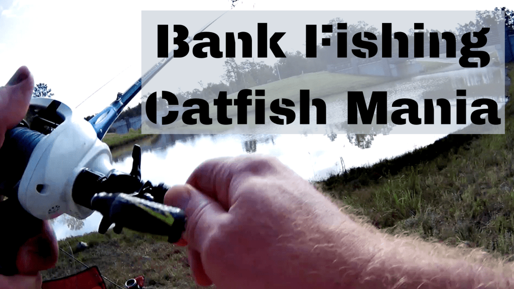 Bank Fishing Catfish Mania
