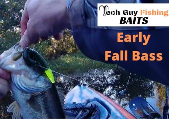 Catching Early Fall Bass using Tech Guy Fishing Baits