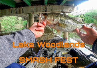 LWWJ Smash Fest Lake Woodlands