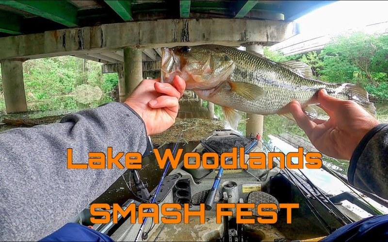 LWWJ Smash Fest Lake Woodlands