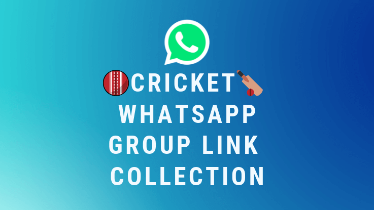 Read more about the article 100+ Cricket Whatsapp Group Link Collection 2021