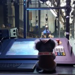 Showtech Australia Invests In Kinesys