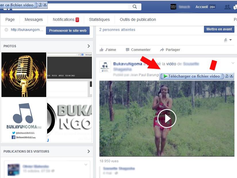 Telecharger Video Facebook avec IDM