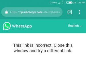WhatsApp API Window Error
