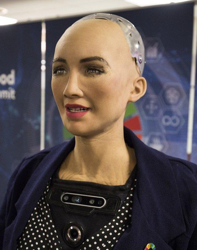 Sophia The AI Humanoid Robot
