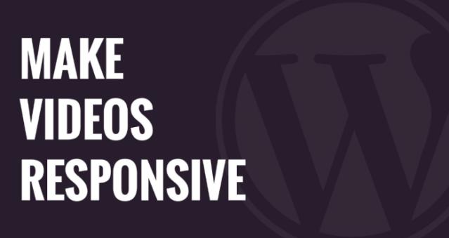 Make Videos Responsive in WordPress 1