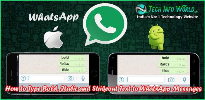 How to Type Bold, Italic and Strikeout Text to WhatsApp Messages On Android