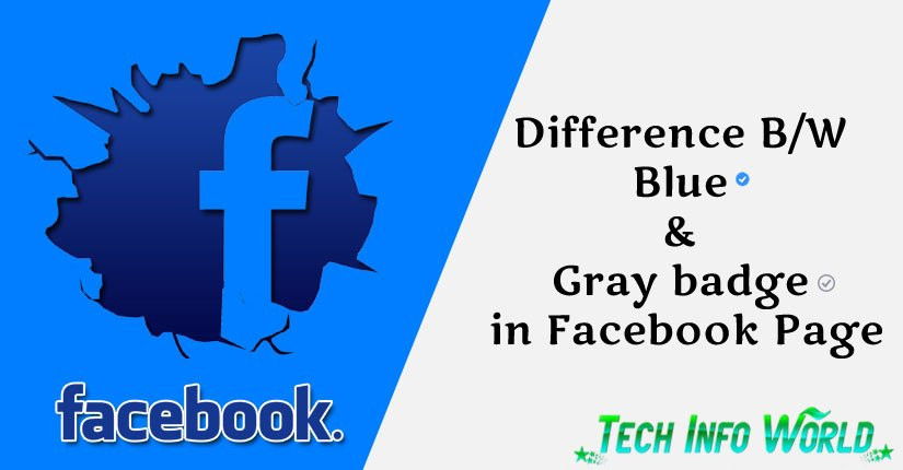 Facebook Page Blue and Gray Badge