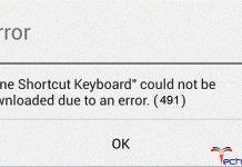 Error Code 491