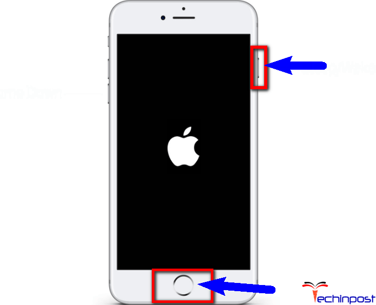 Restart or Reset your iPhone once