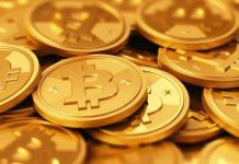 Should you Invest in Cryptocurrencies