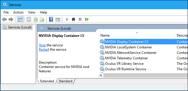 NVIDIA Display Container LS