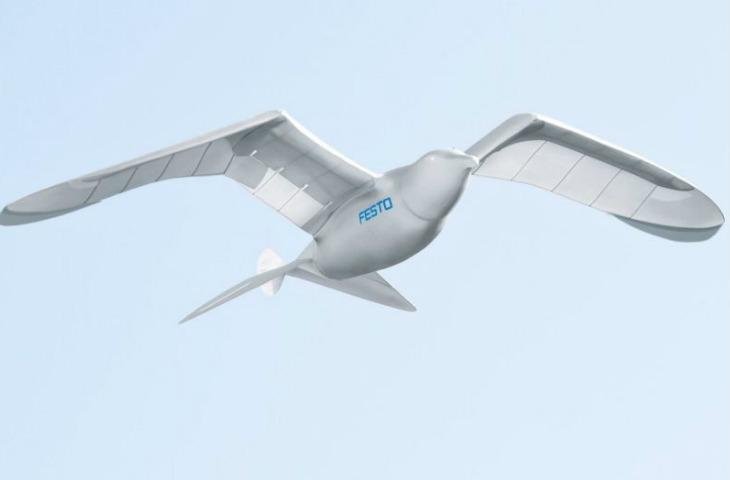 drone kuş