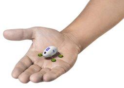 robot böcek