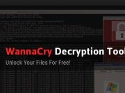Wanakiwi decryption tool